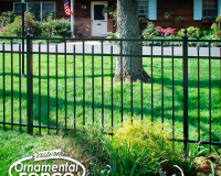 EO4200-BK-4-Foot-High-3-Rail-Eastern-Ornamental-Fence-with-Alternating-Pressed-Point-Pickets #ornamentalfence #aluminumfence #poolfence #aluminumrailing #railing #fencesupplies #railingsupplies #fence #fences #vinylfence #pvcfence #vinylfences #pvcfences #picketfence #fencecompany #fencecontractor #fenceinstaller #fencesupplies #longisland #longislandny #connecticut #rhodeisland #massachusetts #newjersey #pennsylvania #thenortheast #tristatearea