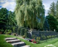 Eastern-Ornamental-Fence-EO54202-BK_0005